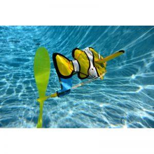(6-PACK) Clownfish (PD-Clownfish-6)